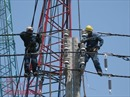 Dự án đường dây 220 kV Nam Sài Gòn – quận 8 sẽ hoàn thành trong tháng 10