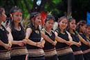 Trưng bày, triển lãm chuyên đề  về Di sản Văn hóa Kon Tum
