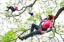 Phụ nữ Đài Loan thích thú với Macho - môn 'trèo cây kiểu Mỹ'