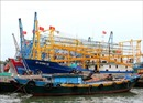 Quảng Trị khai thác gắn với bảo vệ nguồn lợi hải sản