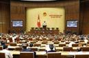 Sáng nay 14/11, Quốc hội thảo luận về báo cáo công tác giải quyết khiếu nại, tố cáo năm 2018
