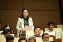 Kỳ họp thứ 8, Quốc hội khóa XIV: Đề xuất không 'công chức hóa' đại biểu Quốc hội chuyên trách