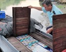 Ngụy trang thành thuyền đánh cá chở 15.000 gói thuốc lá lậu