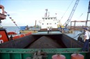 Cảnh sát biển tìm chủ lô hàng trên tàu Tân Phát 36