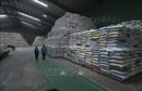 Xuất khẩu gạo sẽ tiếp tục tăng trong những tháng cuối năm