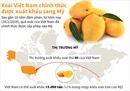 Xoài Việt Nam chính thức xuất khẩu sang Mỹ sau 10 năm đàm phán