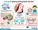 Làm gì để phòng chống bệnh sán lợn?