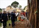 Dâng hương và trồng cây đầu Xuân tại Hoàng thành Thăng Long