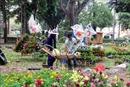 Khai mạc nhiều chợ Tết, hội hoa Xuân 2020 tại TP Hồ Chí Minh