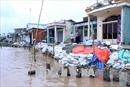 Kiểm tra tiến độ xây dựng kè chống sạt lở trên sông Ô Môn