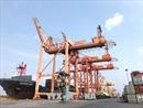 Thủ tướng chỉ đạo sớm điều chỉnh Quy hoạch phát triển Khu bến cảng Lạch Huyện