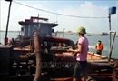 Ngang nhiên khai thác cát trái phép trên sông Hồng