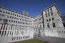 WTO đang giải quyết sốvụ tranh chấp thương mại nhiều nhất trong 16 năm qua