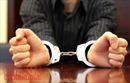 Khởi tố, bắt tạm giam Tổng giám đốc Công ty CityLand