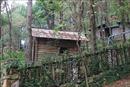 Khó khăn khi giải tỏa vi phạm trật tự xây dựng tại rừng phòng hộ Sóc Sơn