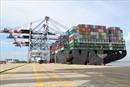 Cần một cảng lớn trung chuyển hàng hóa cho cả vùng đồng bằng sông Cửu Long