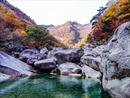 Ưu đãi cho du khách chọn tour khám phá vùng đất Triều Tiên