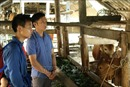 Lan tỏa phong trào cán bộ, đảng viên 'đỡ đầu' hộ nghèo ở Mèo Vạc, Hà Giang