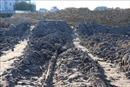 Công ty Hanaka khẳng định 'không đổ trộm chất thải' tại Làng nghề Văn Môn