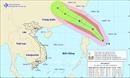 Các tỉnh, thành phố ven biển từ Quảng Ninh đến Bình Định ứng phó với bão Bailu
