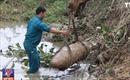 Điện Biên: San nền phát hiện quả bom nặng hơn 300 kg