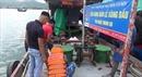 Cảnh sát biển tạmgiữ tàu vận chuyển gần 40.000 lít dầu DO bất hợp pháp