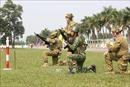 Bế mạc tập huấn, trao đổi kỹ năng bắn súng quân dụng giữa Việt Nam - Australia