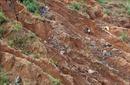 Xử phạt 180 triệu đồng đối với 3 đối tượng khai thác vàng trái phép trên đất rừng