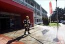 Montenegro tuyên bố hết dịch COVID-19 sau 20 ngày không có ca mắc mới