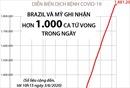 Brazil và Mỹ ghi nhận trên 1.000 ca tử vong vì COVID-19 trong ngày