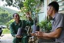 Lão nông đi đầu trong phát triển kinh tế trang trại ở Tuyên Quang