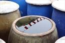 Thương hiệu nước mắm Phan Thiết - Bài 2: Sản xuất nước mắm theo chuỗi an toàn
