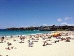 'Âm mưu' nghỉ ốm trước kỳ nghỉ lễ dài tại Australia