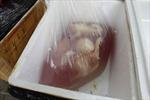 Bắt 1 tấn gà và nội tạng thối nghi từ Trung Quốc