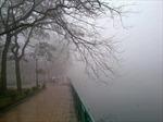 Những ngày mưa thành phố