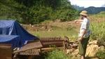 Núp bóng trang trại khai thác vàng trái phép