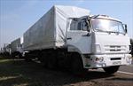 Ukraine công nhận đoàn xe Nga chở hàng cứu trợ