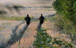 17 lính Ukraine vượt biên sang Nga