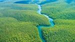 Phát hiện 'đại dương nước ngọt' dưới lòng đất Amazon