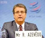 WTO sẵn sàng hỗ trợ Việt Nam hội nhập kinh tế quốc tế