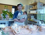 Phụ nữ Nhật khởi nghiệp sau thảm họa