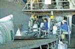 Công ty Cổ phần Supe Phốt phát và Hóa chất Lâm Thao: 52 năm đồng hành cùng nhà nông