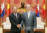 Chủ tịch Quốc hội Nguyễn Sinh Hùng tiếp Chủ tịch Quốc hội Campuchia