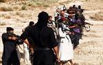 Khoảng 3.000 người Tunisia đã gia nhập IS