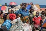 Gần 60 triệu người đi lánh nạn trong năm 2014