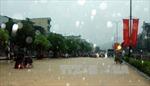 Quảng Ninh - Hải Phòng có mưa to đến rất to và dông