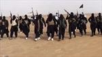 Chuyên gia Mỹ nêu nguyên nhân IS bành trướng ở Syria