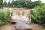 Cảnh báo lũ trên sông từ Nghệ An đến Quảng Ngãi