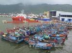 Quảng Ngãi cấm tàu thuyền hoạt động từ 7 giờ ngày 14/9