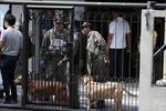 Thái Lan bắt 3 phụ nữ liên đới vụ nổ bom cảng Sathon